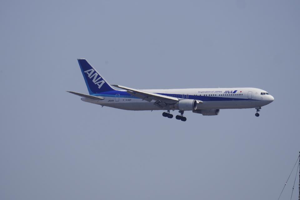 リンリンさんの全日空 Boeing 767-300 (JA610A) 航空フォト