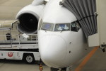 ピーチさんが、岡山空港で撮影した日本航空 737-846の航空フォト(写真)