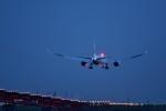 おかめさんが、羽田空港で撮影した日本航空 787-8 Dreamlinerの航空フォト(写真)