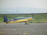 ヒコーキグモさんが、岡南飛行場で撮影したWPコンペティション・アエロバティック・チーム EA-300Lの航空フォト(写真)
