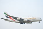 350JMさんが、成田国際空港で撮影したエミレーツ航空 A380-861の航空フォト(写真)