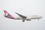 350JMさんが、成田国際空港で撮影したハワイアン航空 A330-243の航空フォト(写真)
