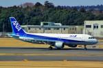 ちっとろむさんが、成田国際空港で撮影した全日空 A320-211の航空フォト(写真)