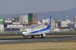 リンリンさんが、伊丹空港で撮影した全日空 737-8ALの航空フォト(写真)