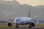 リンリンさんが、伊丹空港で撮影した全日空 777-281の航空フォト(写真)
