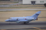 リンリンさんが、名古屋飛行場で撮影した航空自衛隊 U-125A (BAe-125-800SM)の航空フォト(写真)
