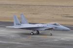 リンリンさんが、名古屋飛行場で撮影した航空自衛隊 F-15J Eagleの航空フォト(写真)