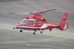 リンリンさんが、名古屋飛行場で撮影した名古屋市消防航空隊 AS365N3 Dauphin 2の航空フォト(写真)