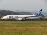 えすぷりさんが、松山空港で撮影した全日空 787-8 Dreamlinerの航空フォト(写真)