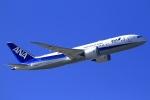 とらとらさんが、羽田空港で撮影した全日空 787-8 Dreamlinerの航空フォト(写真)