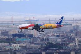 アイトムさんが、伊丹空港で撮影した全日空 777-281/ERの航空フォト(飛行機 写真・画像)