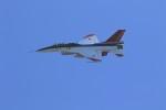 Lead Soloさんが、静浜飛行場で撮影した航空自衛隊 F-2Bの航空フォト(写真)