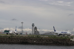 imosaさんが、羽田空港で撮影した全日空の航空フォト(写真)