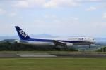 LEVEL789さんが、岡山空港で撮影した全日空 767-381の航空フォト(写真)