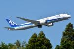 トロピカルさんが、成田国際空港で撮影した全日空 787-9の航空フォト(写真)
