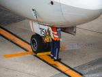 名無しの権兵衛さんが、伊丹空港で撮影した全日空 737-881の航空フォト(写真)