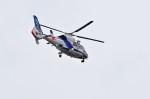 mild lifeさんが、伊丹空港で撮影したオールニッポンヘリコプター AS365N2 Dauphin 2の航空フォト(写真)