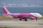 神宮寺ももさんが、関西国際空港で撮影したピーチ A320-214の航空フォト(写真)