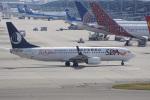 神宮寺ももさんが、関西国際空港で撮影した山東航空 737-85Nの航空フォト(写真)