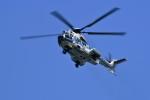 @あきやんさんが、関西国際空港で撮影した海上保安庁 EC225LP Super Puma Mk2+の航空フォト(写真)