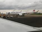 NOCKsさんが、羽田空港で撮影した日本航空 A350-941XWBの航空フォト(写真)