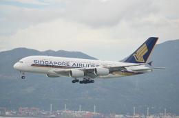 溝川 眞司さんが、HONGKONGで撮影したシンガポール航空 A380-841の航空フォト(飛行機 写真・画像)