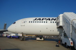 masa634さんが、成田国際空港で撮影した日本航空 787-9の航空フォト(写真)