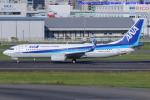 いおりさんが、福岡空港で撮影した全日空 737-8ALの航空フォト(写真)