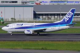 いおりさんが、福岡空港で撮影したANAウイングス 737-54Kの航空フォト(写真)