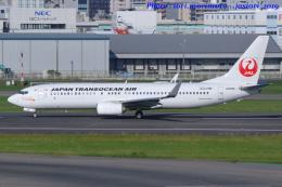 いおりさんが、福岡空港で撮影した日本トランスオーシャン航空 737-8Q3の航空フォト(写真)