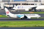 kamerajiijiさんが、羽田空港で撮影した日本航空 737-846の航空フォト(写真)