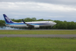 sakanayahiroさんが、釧路空港で撮影した全日空 737-881の航空フォト(飛行機 写真・画像)