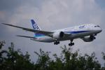 じょーじさんが、成田国際空港で撮影した全日空 787-8 Dreamlinerの航空フォト(写真)