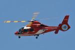 鈴鹿@風さんが、名古屋飛行場で撮影した名古屋市消防航空隊 AS365N3 Dauphin 2の航空フォト(写真)