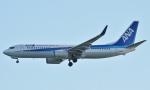 鉄バスさんが、羽田空港で撮影した全日空 737-881の航空フォト(写真)