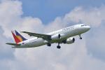 パンダさんが、成田国際空港で撮影したフィリピン航空 A320-214の航空フォト(写真)