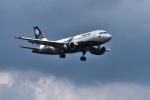 パンダさんが、成田国際空港で撮影したオーロラ A319-111の航空フォト(飛行機 写真・画像)