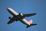 yasunori0624さんが、関西国際空港で撮影したユニ・トップエアラインズ A300B4-605R(F)の航空フォト(写真)