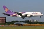 たみぃさんが、成田国際空港で撮影したタイ国際航空 A380-841の航空フォト(写真)