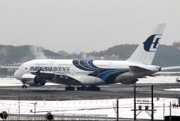 nishikiさんが、成田国際空港で撮影したマレーシア航空 A380-841の航空フォト(飛行機 写真・画像)