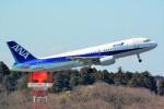ちっとろむさんが、成田国際空港で撮影した全日空 A320-214の航空フォト(写真)