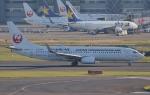 鉄バスさんが、羽田空港で撮影した日本トランスオーシャン航空 737-8Q3の航空フォト(写真)