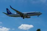 チャッピー・シミズさんが、宮古空港で撮影した全日空 737-881の航空フォト(写真)