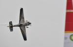 betaさんが、千葉県立幕張海浜公園で撮影したエアクラフト・ギャランティ (AGC) Edge 540 V3の航空フォト(写真)