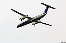 Jin Bergqiさんが、伊丹空港で撮影したANAウイングス DHC-8-402Q Dash 8の航空フォト(写真)