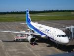 furaibo123さんが、鳥取空港で撮影した全日空 A320-211の航空フォト(飛行機 写真・画像)