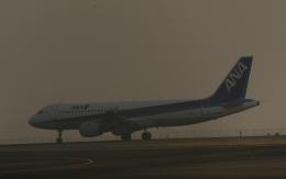 fukucyanさんが、関西国際空港で撮影した全日空 A320-211の航空フォト(飛行機 写真・画像)