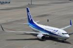 Joshuaさんが、中部国際空港で撮影した全日空 737-781の航空フォト(写真)