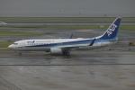 SIさんが、羽田空港で撮影した全日空 737-881の航空フォト(写真)