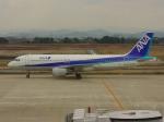 M.Chihara_1さんが、米子空港で撮影した全日空 A320-211の航空フォト(写真)